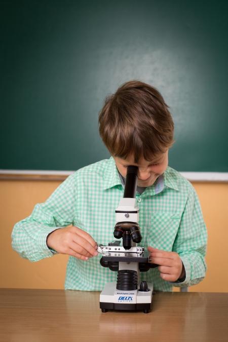 Innowacja pedagogiczna - mali badacze